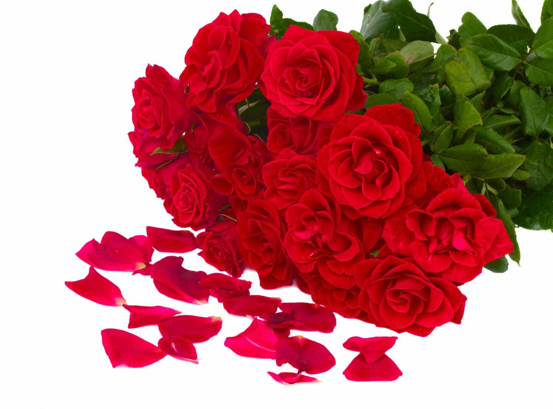 Открытка Букет роз для Тебя! - Цветы подруга Pinterest Floral 78